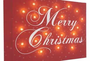 Merry Christmas from all at GSF